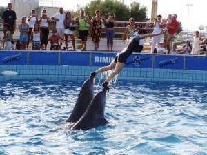 delfinario-rimini